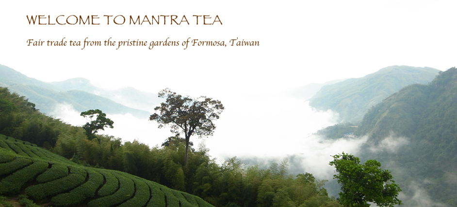 About Mantra Tea